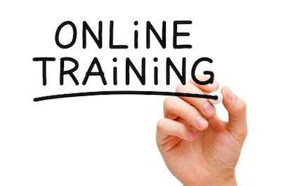 What Do We Want in Online Training?